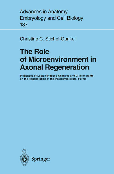 The Role of Microenvironment in Axonal Regeneration - Coverbild
