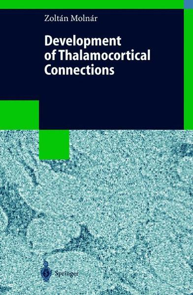 Development of Thalamocortical Connections - Coverbild