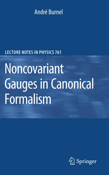 Noncovariant Gauges in Canonical Formalism - Coverbild