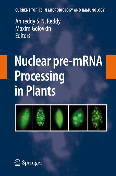 Nuclear pre-mRNA Processing in Plants - Coverbild