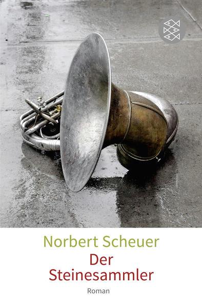 Der Steinesammler - Coverbild