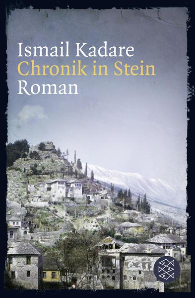 Chronik in Stein - Coverbild