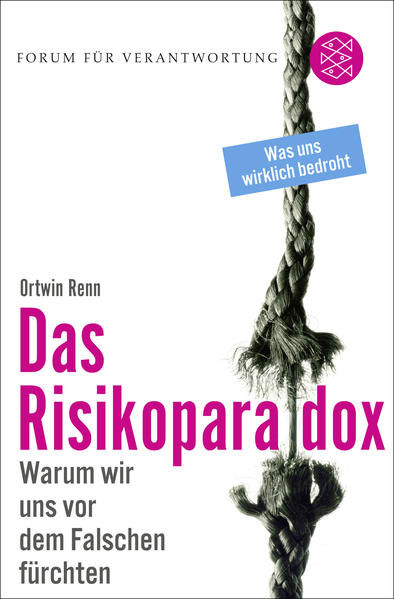Das Risikoparadox - Coverbild