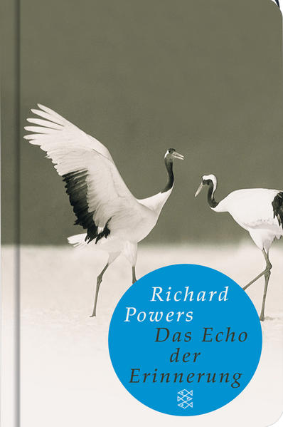 Das Echo der Erinnerung - Coverbild