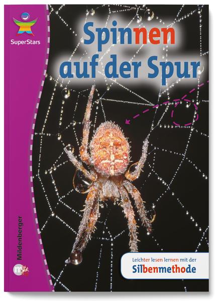 SuperStars – Sachtexte - Coverbild