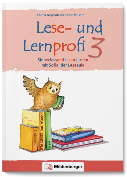 Lese- und Lernprofi 3 – Schülerarbeitsheft – silbierte Ausgabe - Coverbild