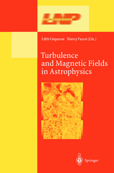 Turbulence and Magnetic Fields in Astrophysics - Coverbild