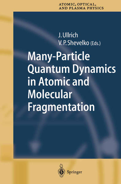 Many-Particle Quantum Dynamics in Atomic and Molecular Fragmentation - Coverbild