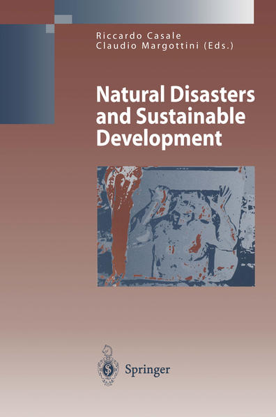 Natural Disasters and Sustainable Development - Coverbild