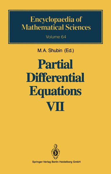 Partial Differential Equations VII - Coverbild