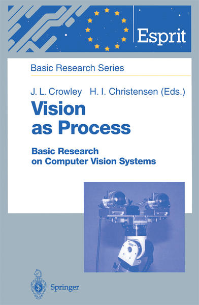 Vision as Process - Coverbild