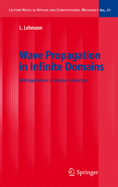 Wave Propagation in Infinite Domains - Coverbild