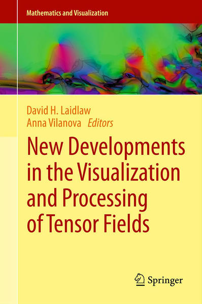 New Developments in the Visualization and Processing of Tensor Fields - Coverbild