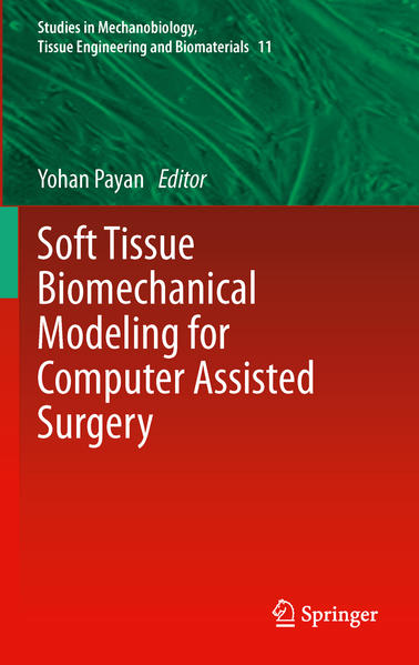 Soft Tissue Biomechanical Modeling for Computer Assisted Surgery - Coverbild