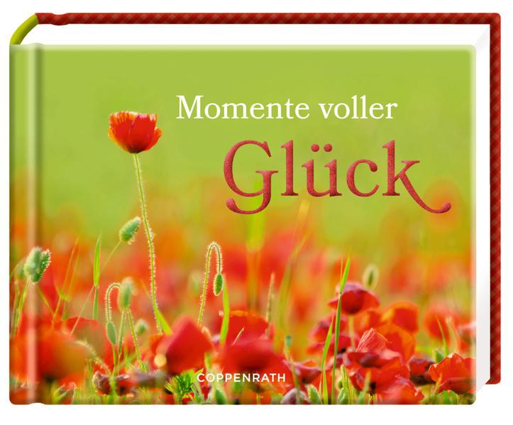 Momente voller Glück - Coverbild