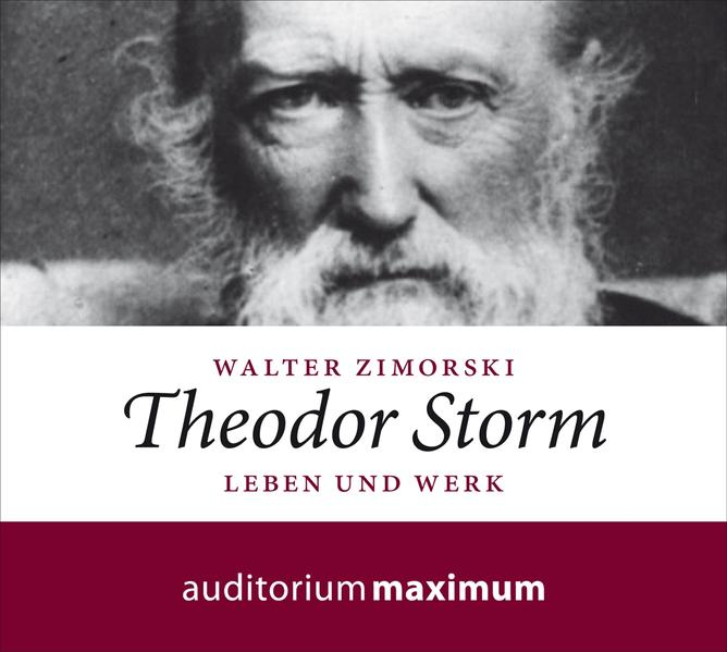 Theodor Storm - Coverbild
