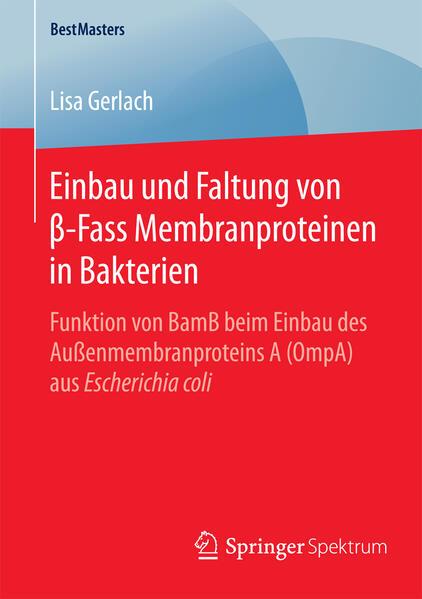 Einbau und Faltung von β-Fass Membranproteinen in Bakterien - Coverbild