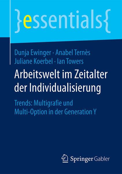Arbeitswelt im Zeitalter der Individualisierung - Coverbild