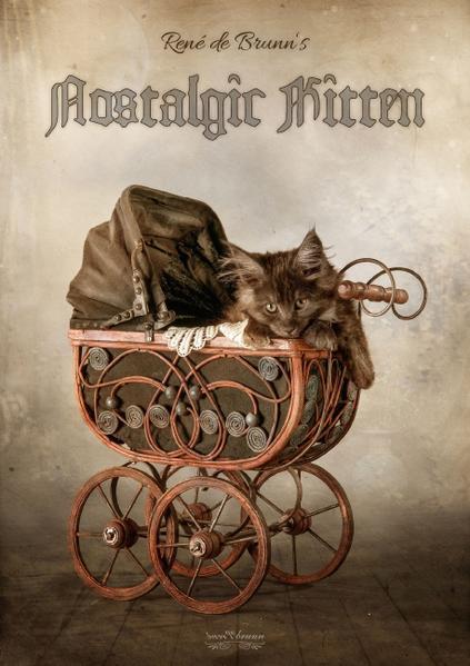 nostalgic kitten (Posterbuch DIN A2 hoch) - Coverbild