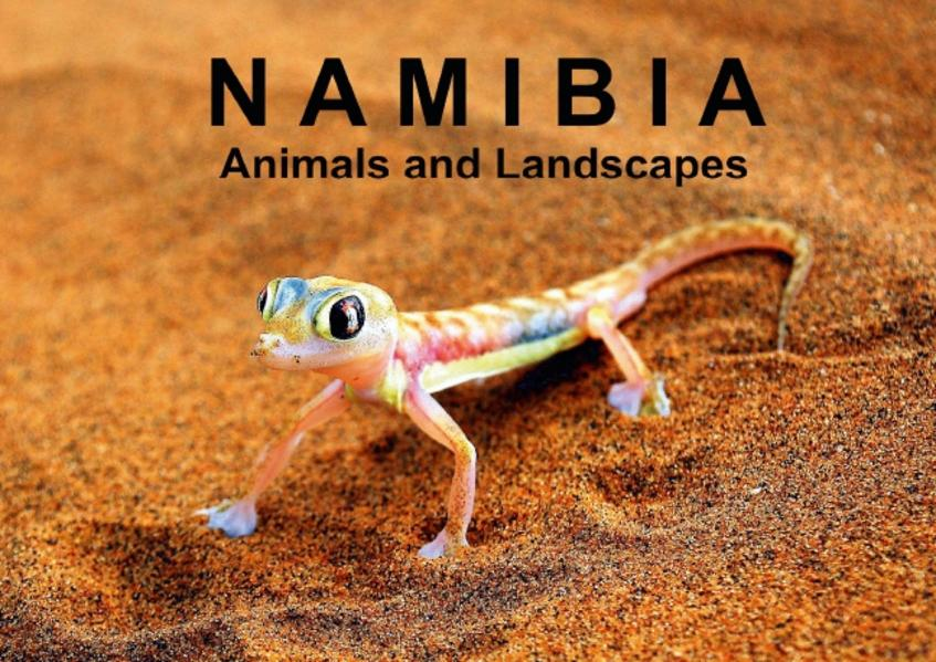 Namibia - Animals and Landscapes (Poster Book DIN A4 Landscape) - Coverbild