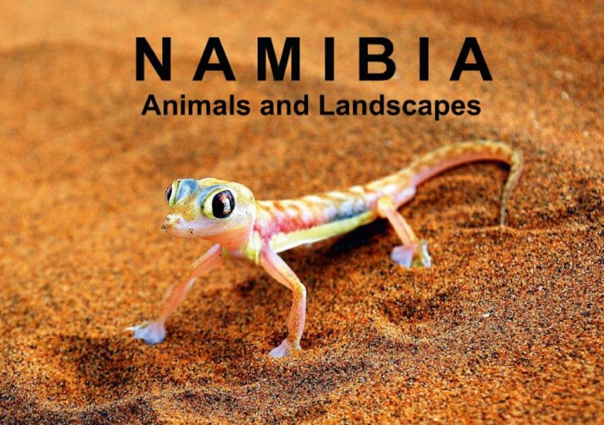 Namibia - Animals and Landscapes (Stand-Up Mini Poster  DIN A5 Landscape) - Coverbild