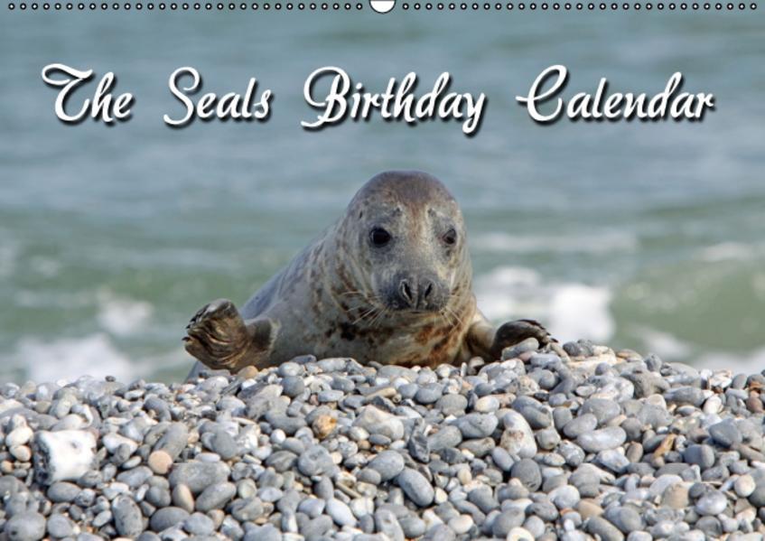 The Seals / UK-Version / Birthday Calendar (Wall Calendar perpetual DIN A2 Landscape) - Coverbild