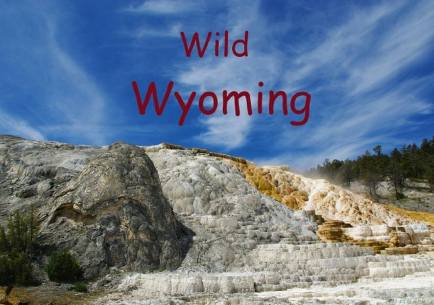 Wild Wyoming / UK-Version (Stand-Up Mini Poster  DIN A5 Landscape) - Coverbild