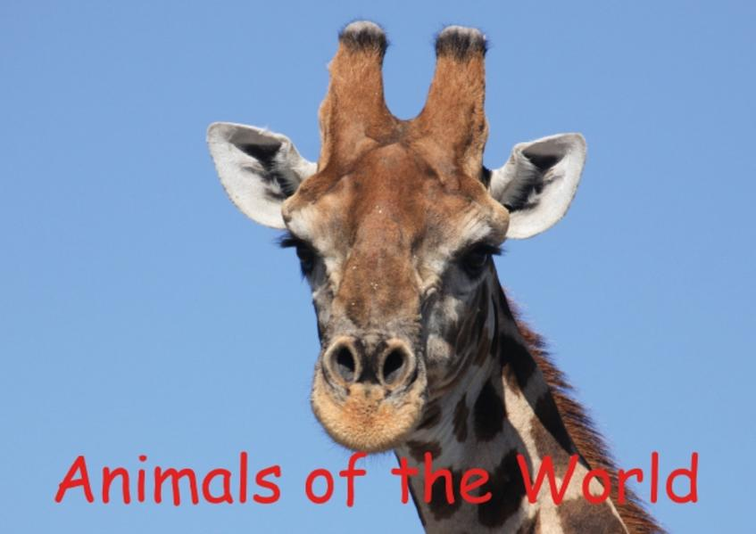 Animals of the World (Poster Book DIN A4 Landscape) - Coverbild