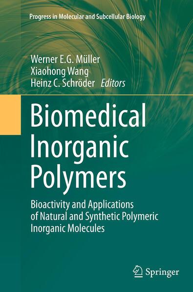 Biomedical Inorganic Polymers - Coverbild
