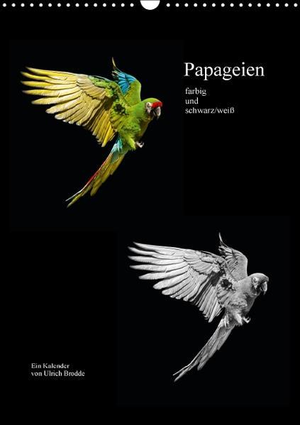 Papageien - farbig und schwarz/weiß (Wandkalender 2016 DIN A3 hoch) - Coverbild