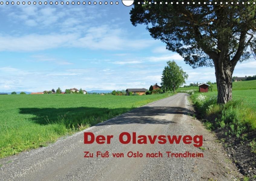 Der Olavsweg (Wandkalender 2016 DIN A3 quer) - Coverbild