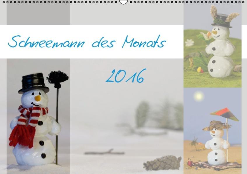 Schneemann des Monats 2016 (Wandkalender 2016 DIN A2 quer) - Coverbild
