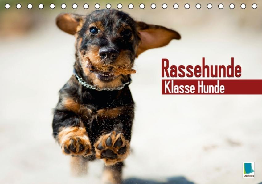 Rassehunde: Klasse Hunde Epub Kostenloser Download