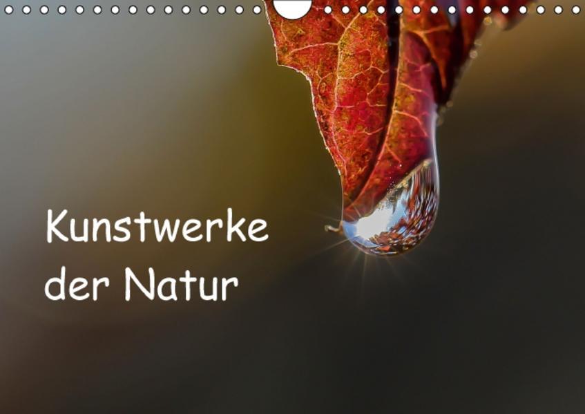 Epub Free Kunstwerke der Natur Herunterladen