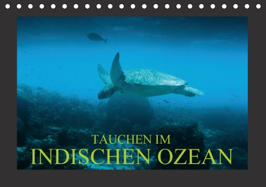 Tauchen im Indischen Ozean Laden Sie PDF-Ebooks Herunter