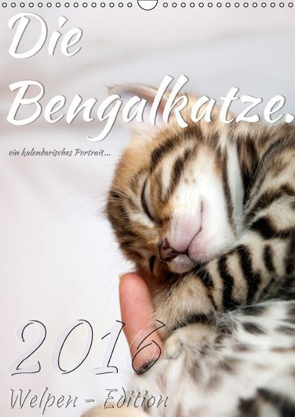Die Bengalkatze. Welpen-Edition (Wandkalender 2016 DIN A3 hoch) - Coverbild