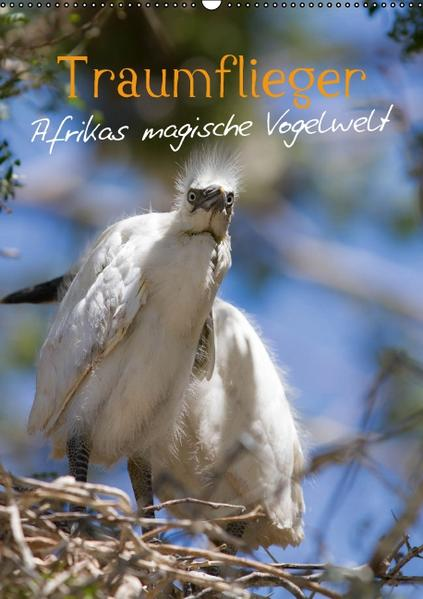 Traumflieger - Afrikas magische Vogelwelt (Wandkalender 2016 DIN A2 hoch) - Coverbild