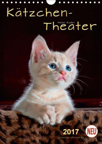 Kätzchen - Theater (Wandkalender 2017 DIN A4 hoch) - Coverbild