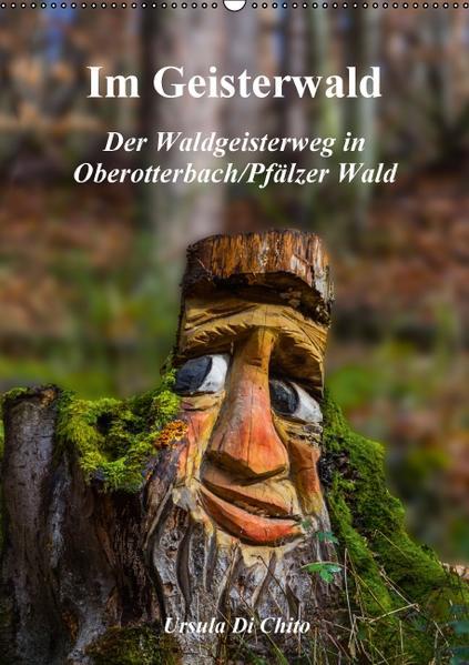 Im Geisterwald - Der Waldgeisterweg in Oberotterbach / Pfälzer Wald (Wandkalender 2017 DIN A2 hoch) - Coverbild
