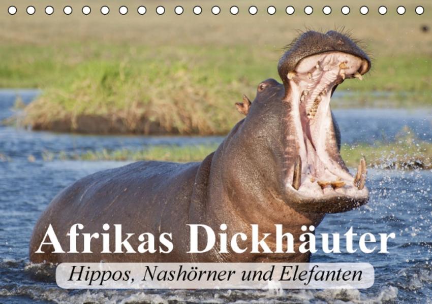Afrikas Dickhäuter. Hippos, Nashörner und Elefanten (Tischkalender 2017 DIN A5 quer) - Coverbild