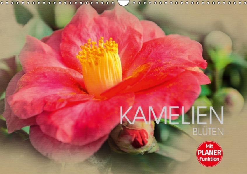 Kamelien Blüten (Wandkalender 2017 DIN A3 quer) - Coverbild