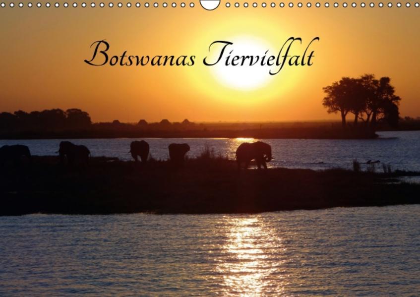 Botswanas Tiervielfalt (Wandkalender 2017 DIN A3 quer) - Coverbild