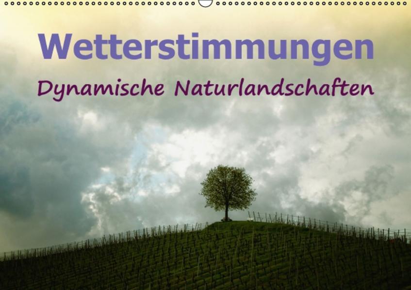 Wetterstimmungen. Dynamische Naturlandschaften (Wandkalender 2017 DIN A2 quer) - Coverbild