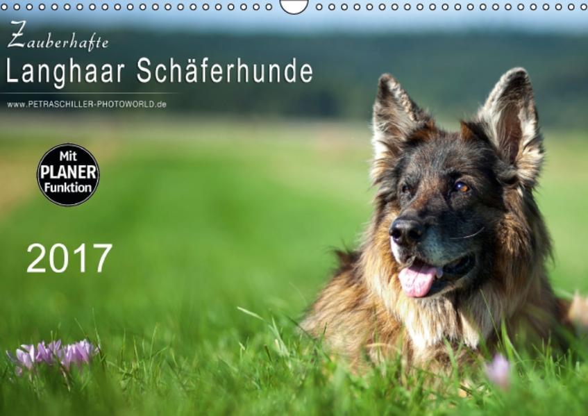 Zauberhafte Langhaar Schäferhunde (Wandkalender 2017 DIN A3 quer) - Coverbild