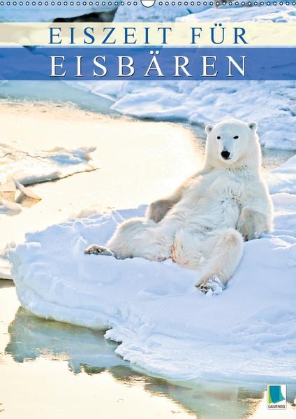 Eiszeit für Eisbären (Wandkalender 2017 DIN A2 hoch) - Coverbild