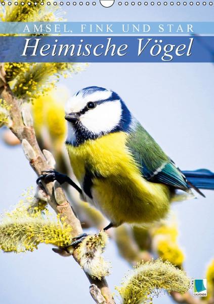 Amsel, Fink und Star: Heimische Vögel (Wandkalender 2017 DIN A3 hoch) - Coverbild