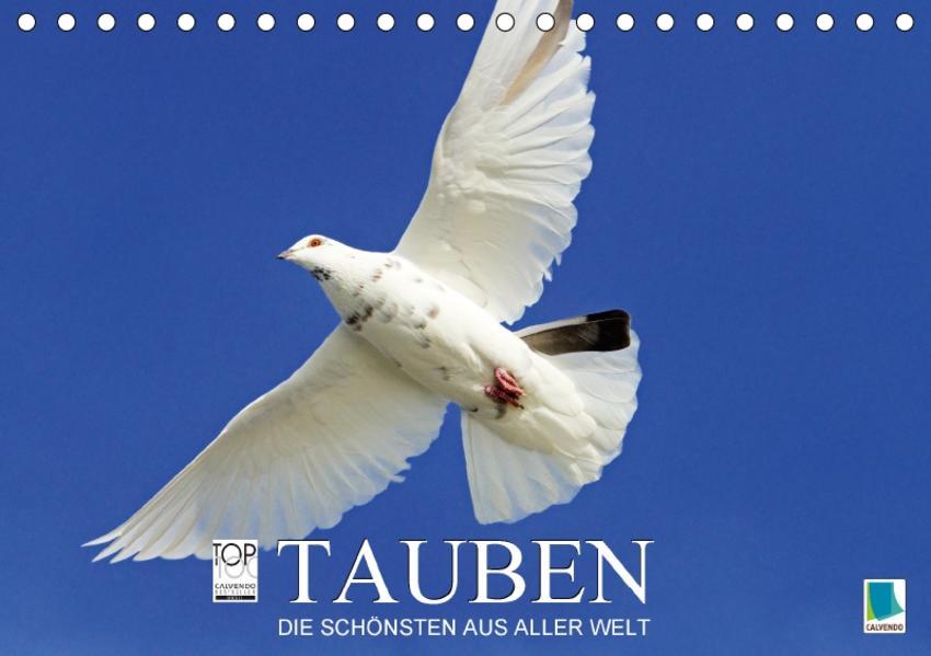 Tauben: die Schönsten aus aller Welt (Tischkalender 2017 DIN A5 quer) - Coverbild