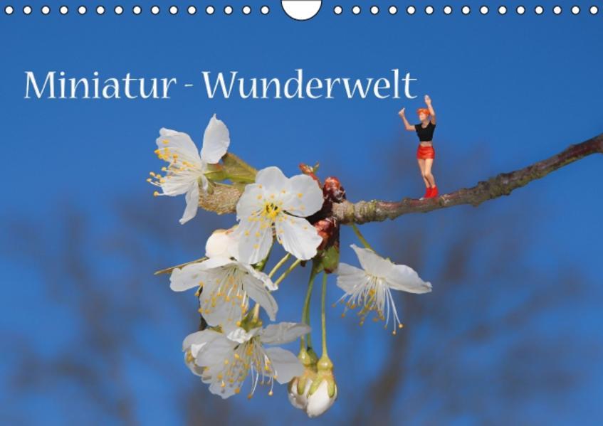 Miniatur-Wunderwelt (Wandkalender 2017 DIN A4 quer) - Coverbild