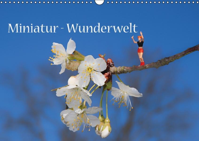 Miniatur-Wunderwelt (Wandkalender 2017 DIN A3 quer) - Coverbild
