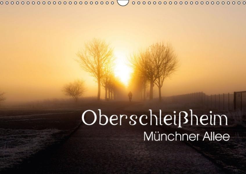 Oberschleißheim - Münchner Allee (Wandkalender 2017 DIN A3 quer) - Coverbild